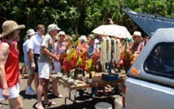 Hanapepe Sunshine Market