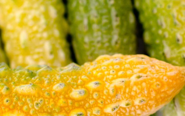 Kauai Food Tour – Farmers Market