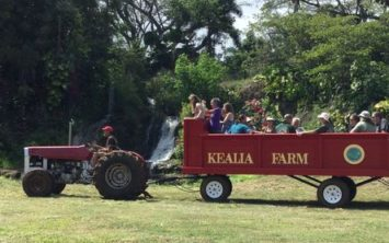 Kealia Farm Tours