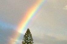 Slack Key Rainbow